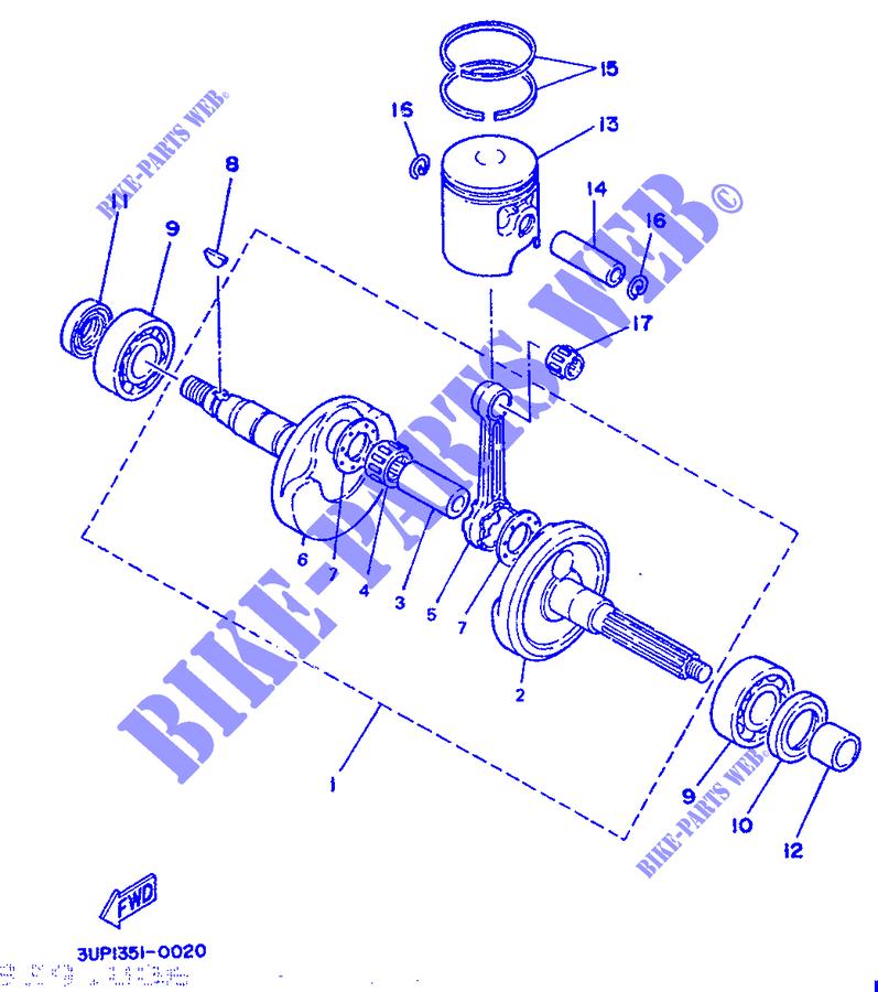 Pro Braking PBF9636-TBL-BLU Front Braided Brake Line Transparent Blue Hose /& Stainless Blue Banjos